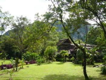 Reception im Dschungel