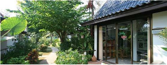 Reception der Bungalowanlage - Tauchschule Phuket