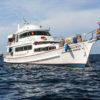 Safariboot - Kamala Tauchschule