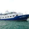 Safariboot Tauchschule Patong Beach