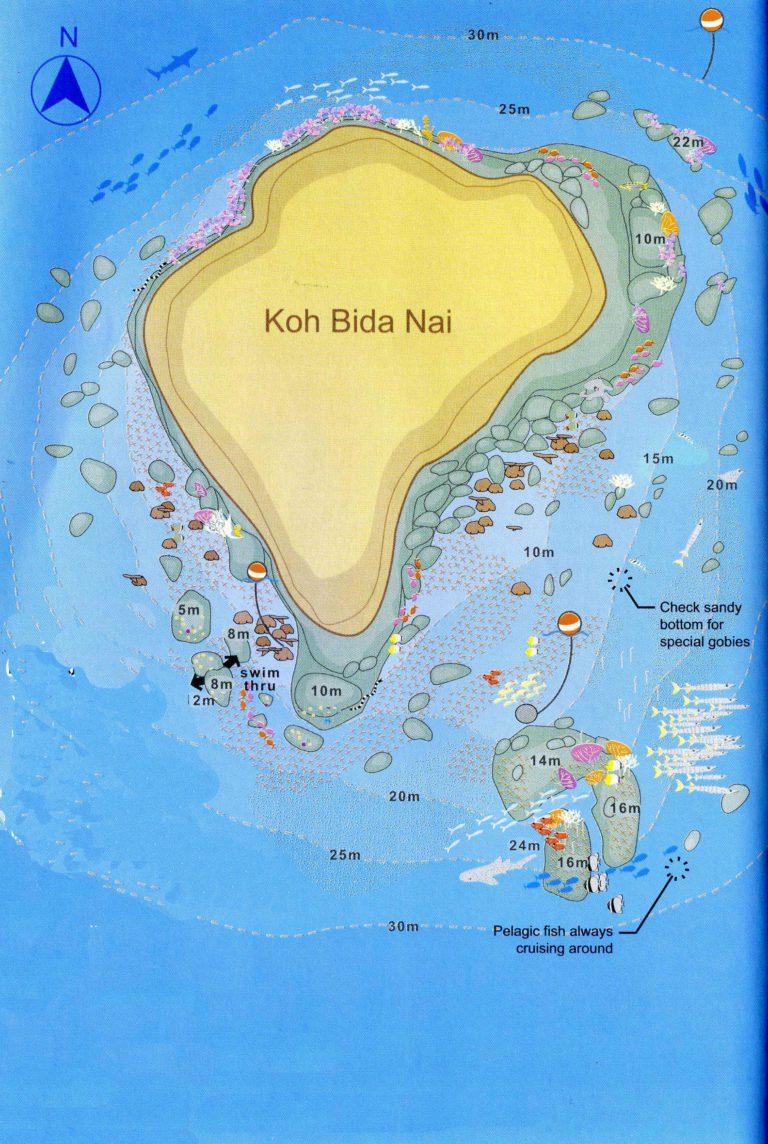 Phi Phi Island Phuket Tauchschule