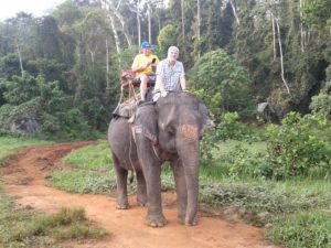Elephant Trecking - Phuket Tauchschule