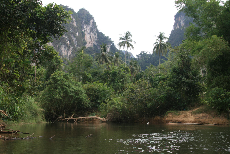 Dschungelfluß - Kamala Dive Service