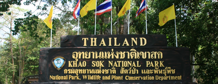 Welcome Khao Sok National Park