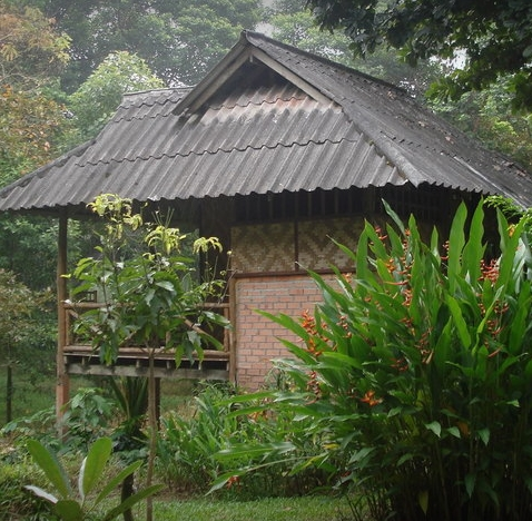 Unterkunft im Regenwald - Khao Sok National Park.