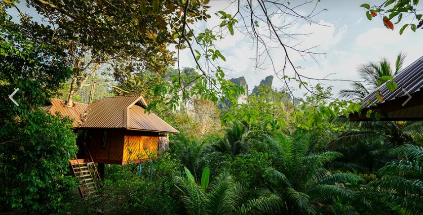Baumhausunterkünfte im Khao Sok National Park
