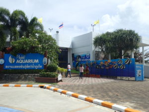 Aquarium - Phuket Tauchschule