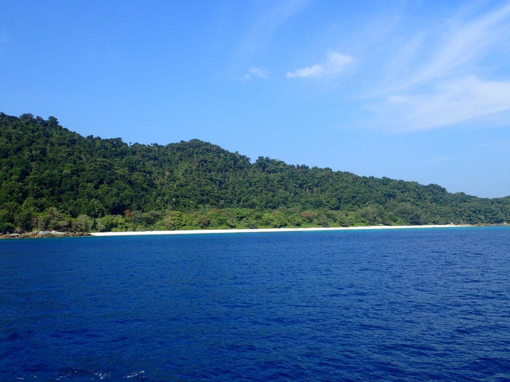 Koh Tachai Reef - Kamala Dive Service