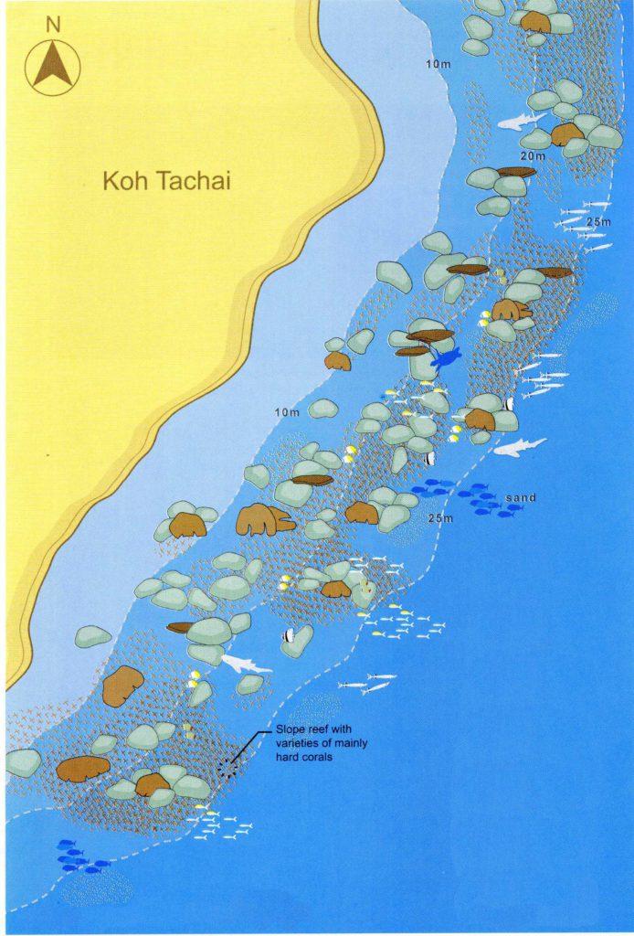 Koh Taschai Reef - Kamala Dive Service