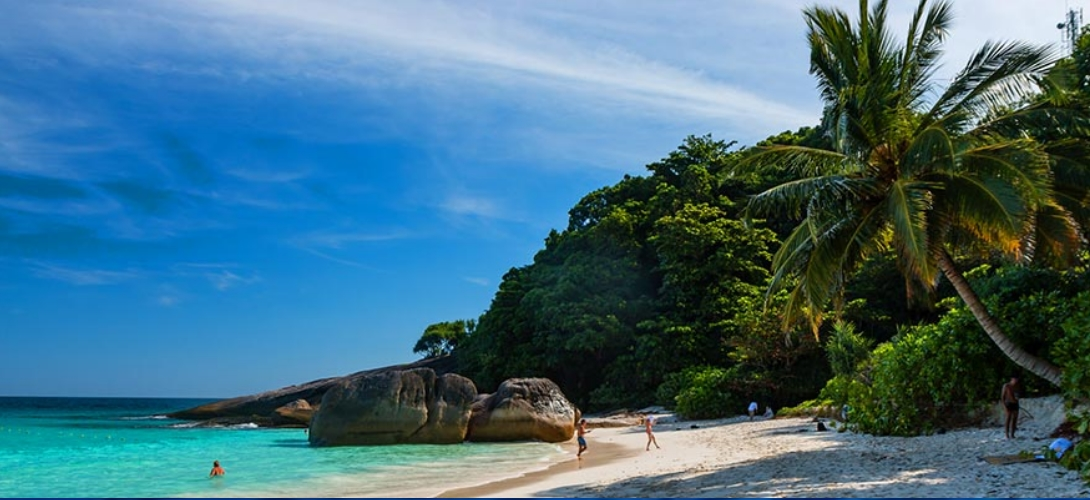 Palmenstrand - Similan Islands